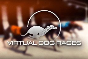 Virtual Dog Races